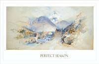Perfect Season P2920