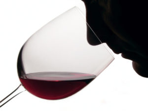 It is through the aromas of wine that wine is tasted.
