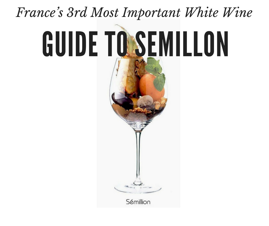 Guide to Semillon