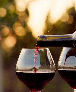 Red Wine Varietals