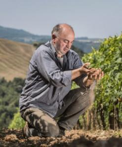Andrea Cortonesi, Uccelliera Winemaker, Tuscany