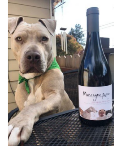 pitbull with pinot noir